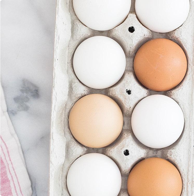 自然の中、放し飼いで育てた鶏の卵