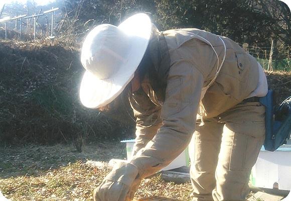 養蜂家の梅沢さん